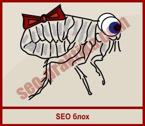 Позиции в поисковых системах